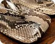 ニシキヘビ革丸草履 前壷