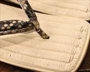 焼き入り籐表雪駄にニシキヘビ革二石花緒 前壷
