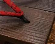 焼き真角に蜻蛉柄印伝花緒 前壷